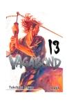 IVRNVAGAB13